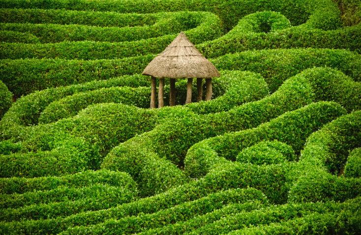 Extensive free-flowing asian garden maze
