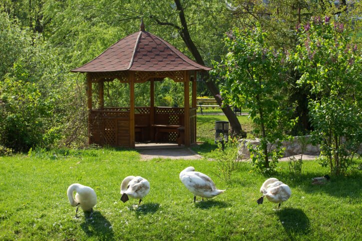 The slight bell curve of this gazebo and large shingles stand out against the wooded backdrop.