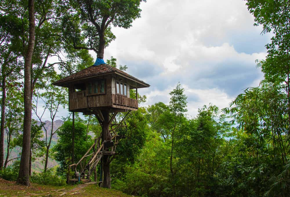 Square treehouse 12 feet above the ground in forest.
