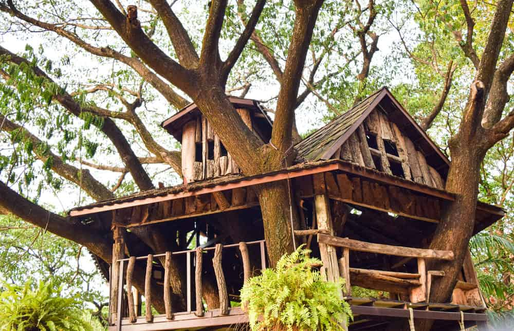 Log style treehouse with deck and dormer window.