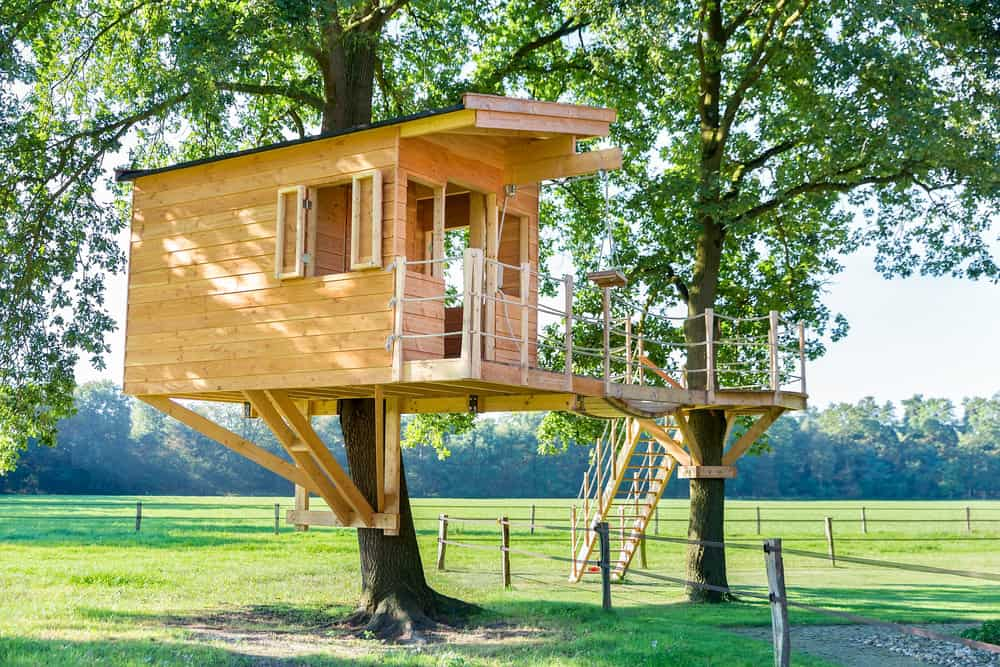 Well built wooden treehouse with bridge to deck on nearby tree.