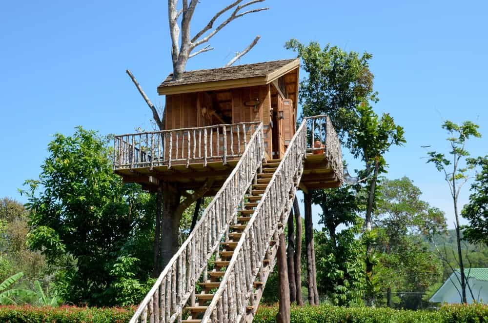 Well built treehouse with wrap-around deck and long straight staircase leading up to the entrance.