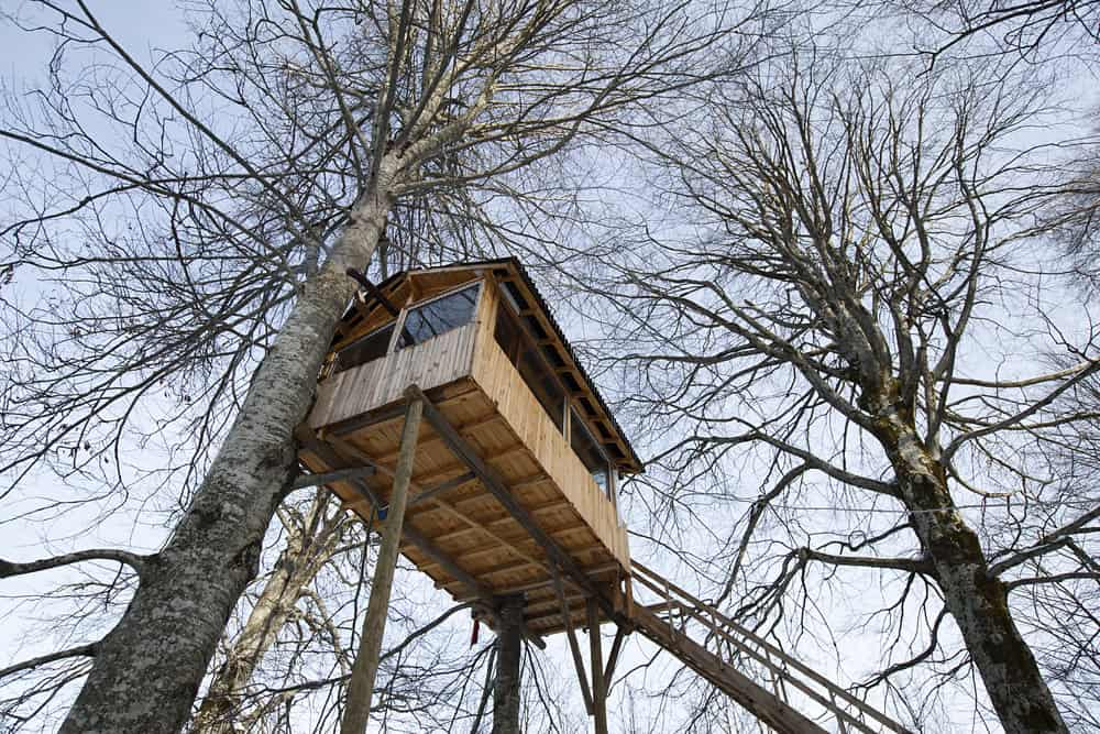 Small rectangle treehouse built very high up.