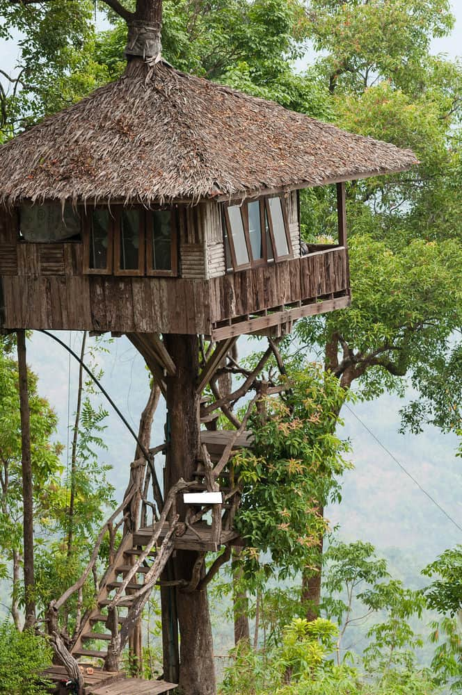 Thatch roof style treehouse elevated at least 20 feet above the ground.