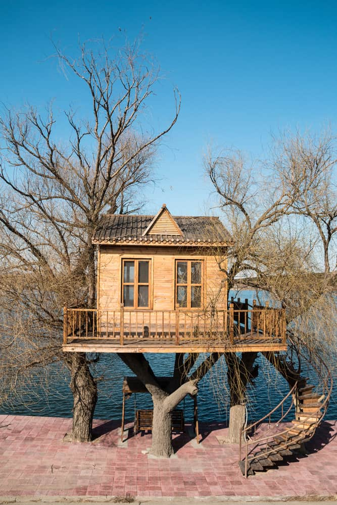 Wooden treehouse with veranda style deck overlooking lake with winding staircase leading up to the deck.