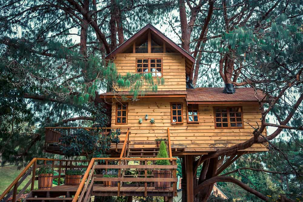 Large 2-story treehouse built well enough that you could live in it.