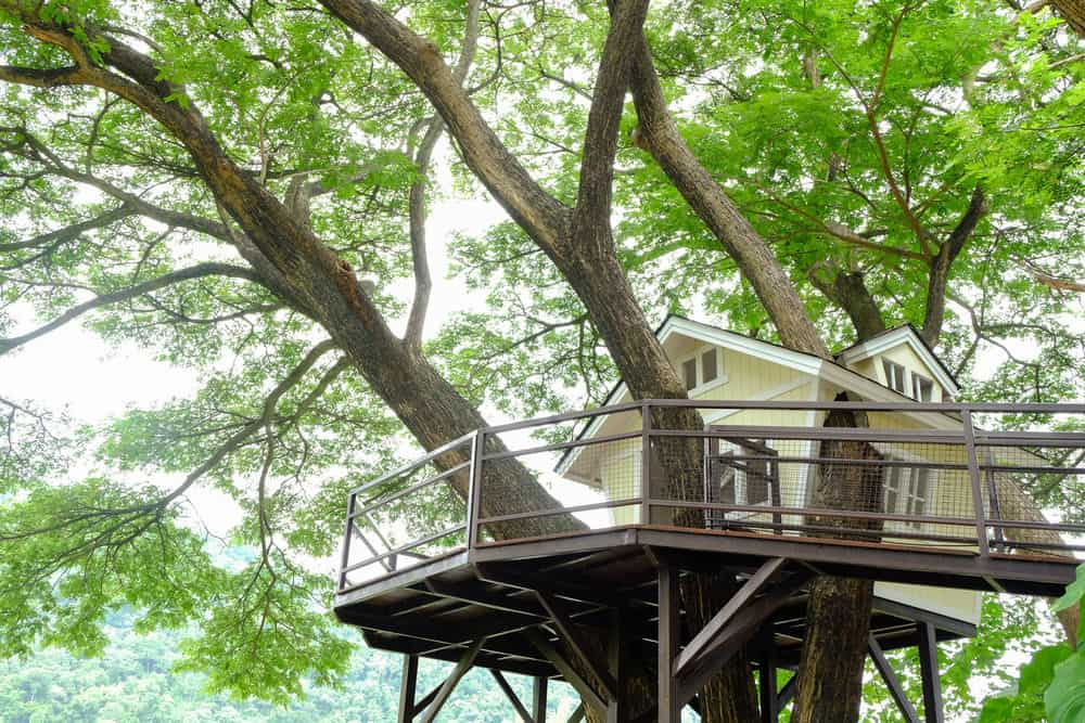 High up treehouse with large deck and bridge to deck platform.