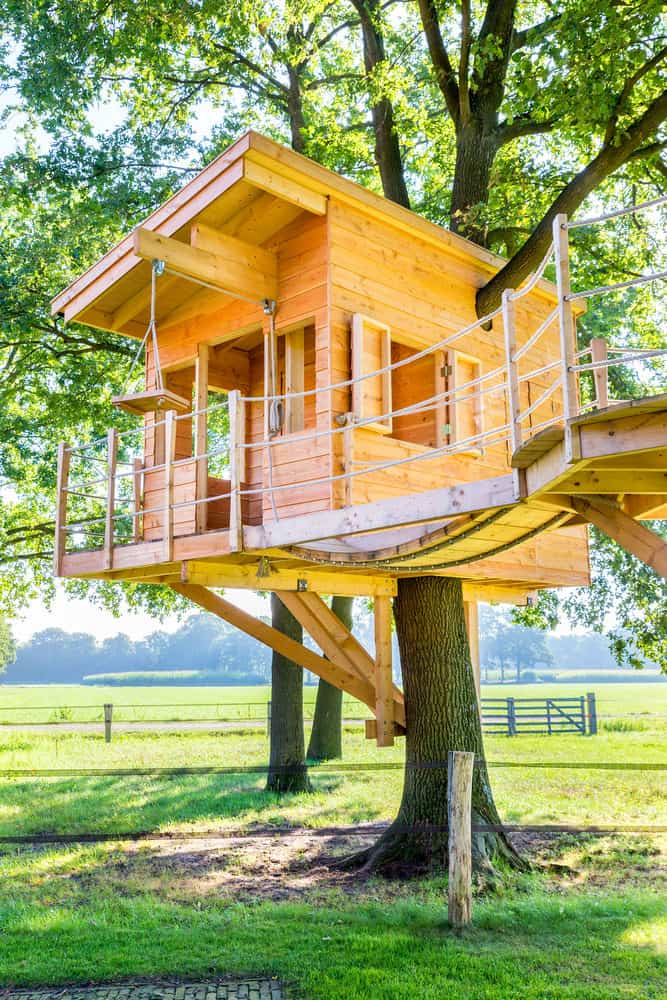 Very nicely built modern-looking treehouse.