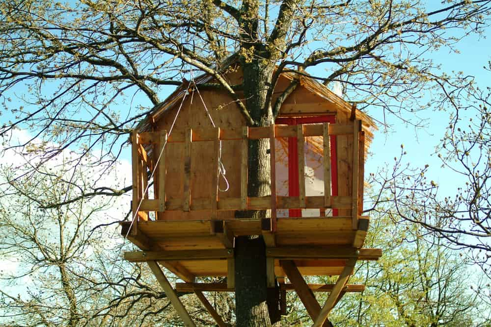 Large wooden treehouse with gable roof fairly high up in the tree.