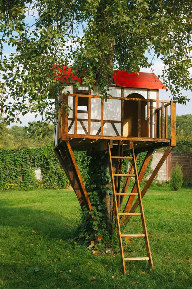 Small white treehouse with ladder and red roof.