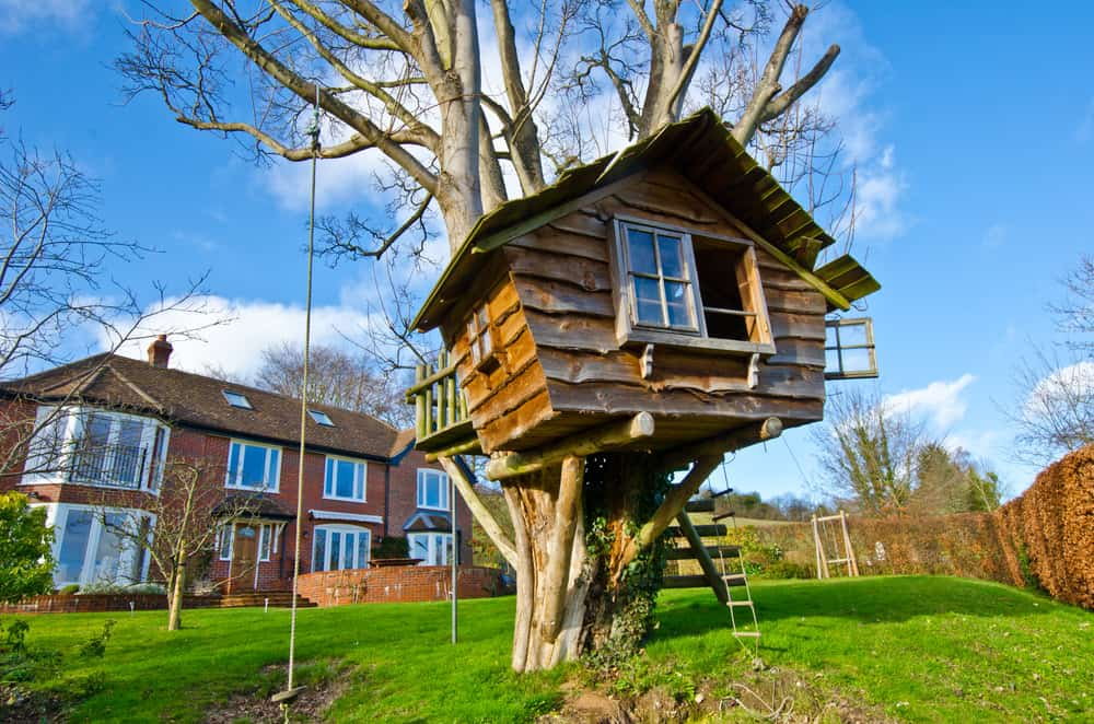 Terrific kids treehouse in the backyard with window.