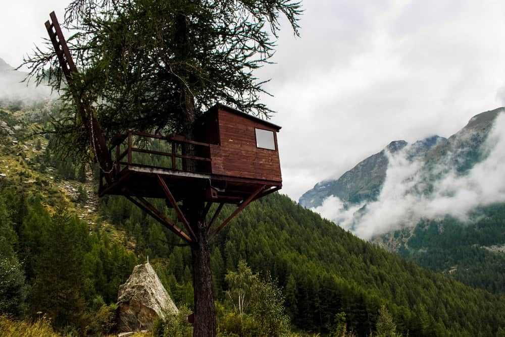 Small treehouse with shed style roof, window and large front deck with ladder that swings up and down.