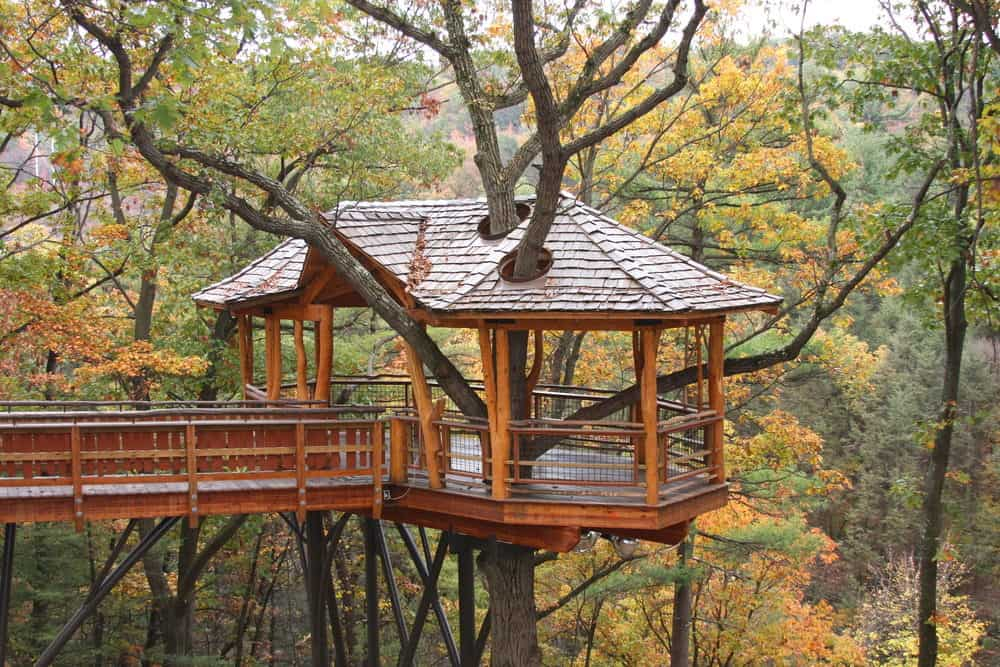 Crazy high treehouse in gazebo style with skywalk