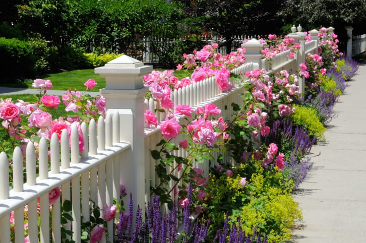 Here we have a unique cylindrical post white picket garden fence design, with flowers mixed throughout.