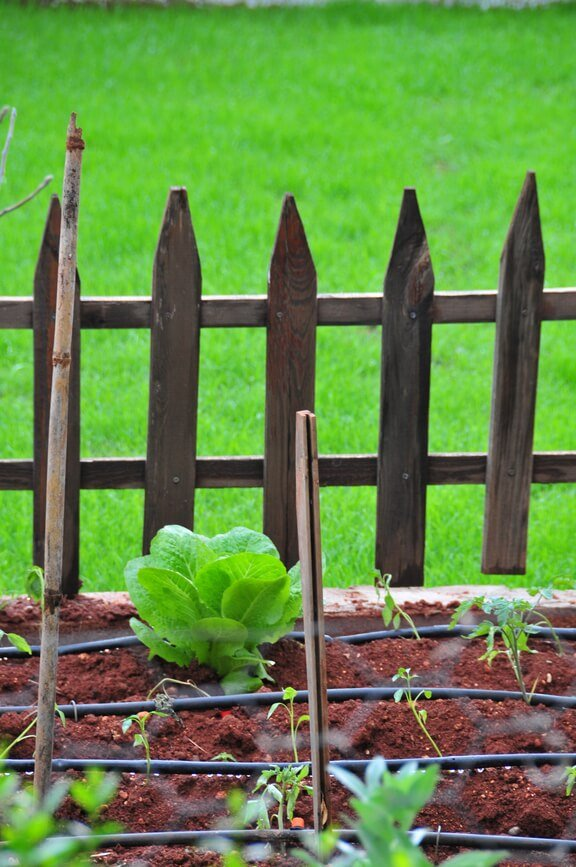 Here's a very sparse, natural wood garden fence design.