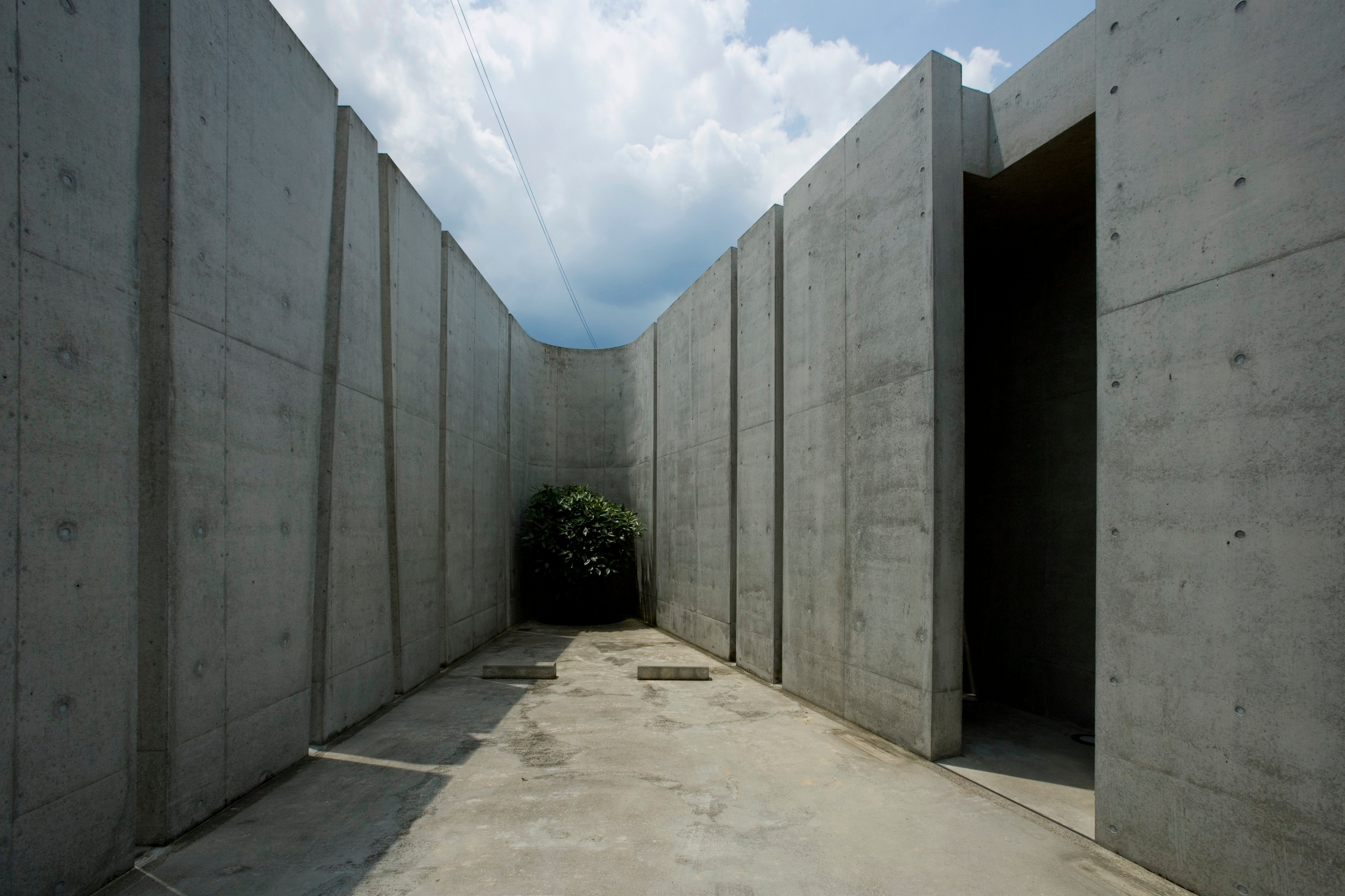 Exterior wall bends sharply at the corners, with greenery placed strategically throughout the outside space.