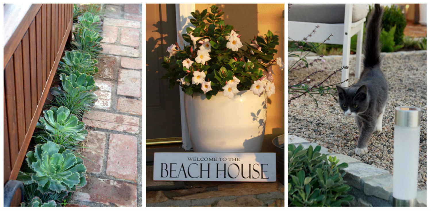 Contemporary Beach House Landscaping by Living Gardens Landscape Design