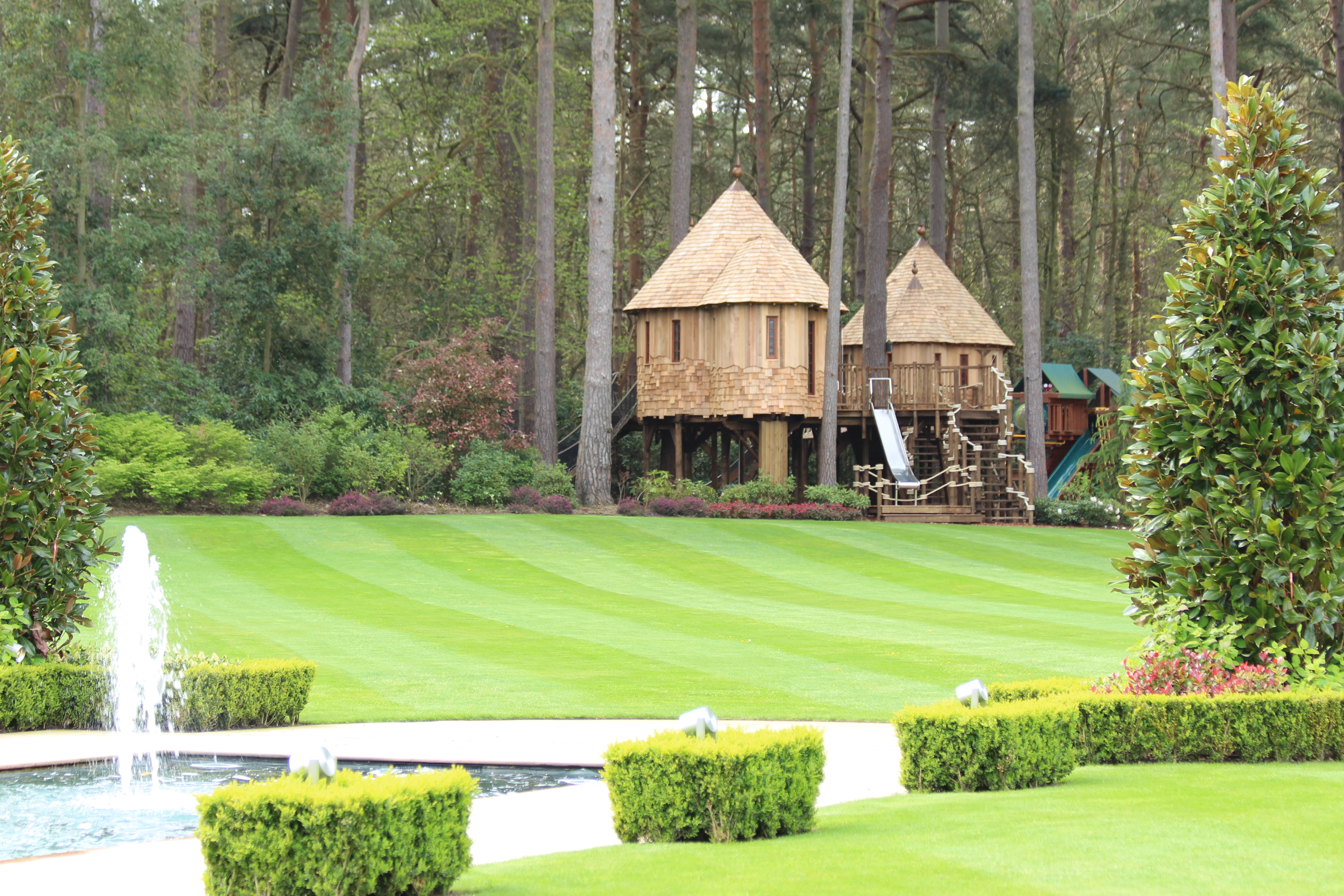 A view of the treehouses and adventure area from across the lawn. The treehouses are tucked neatly into the edge of the trees.