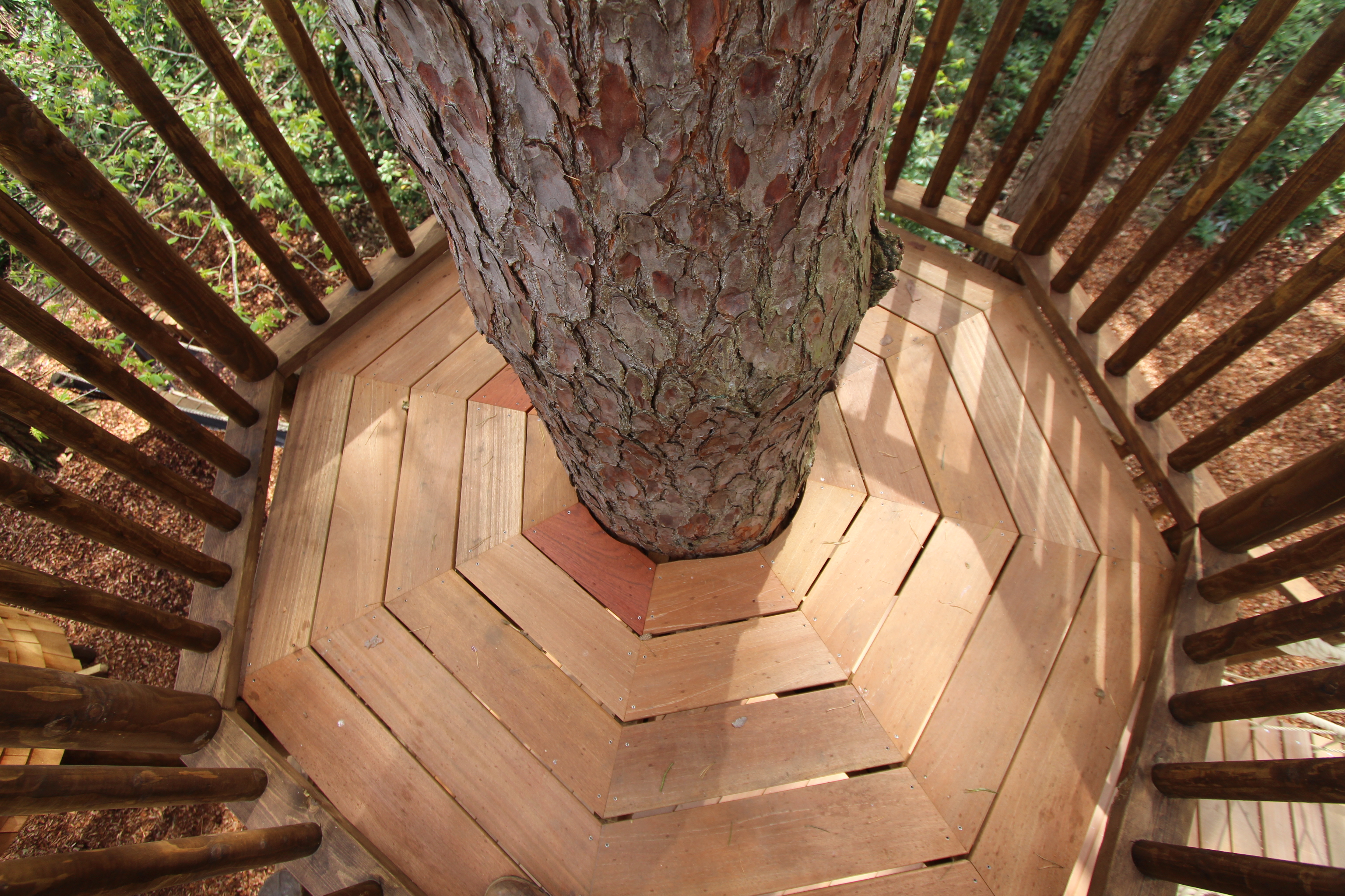 The crow's nest is built around a sturdy pine. Wood planks in an octagon form the floor around it.