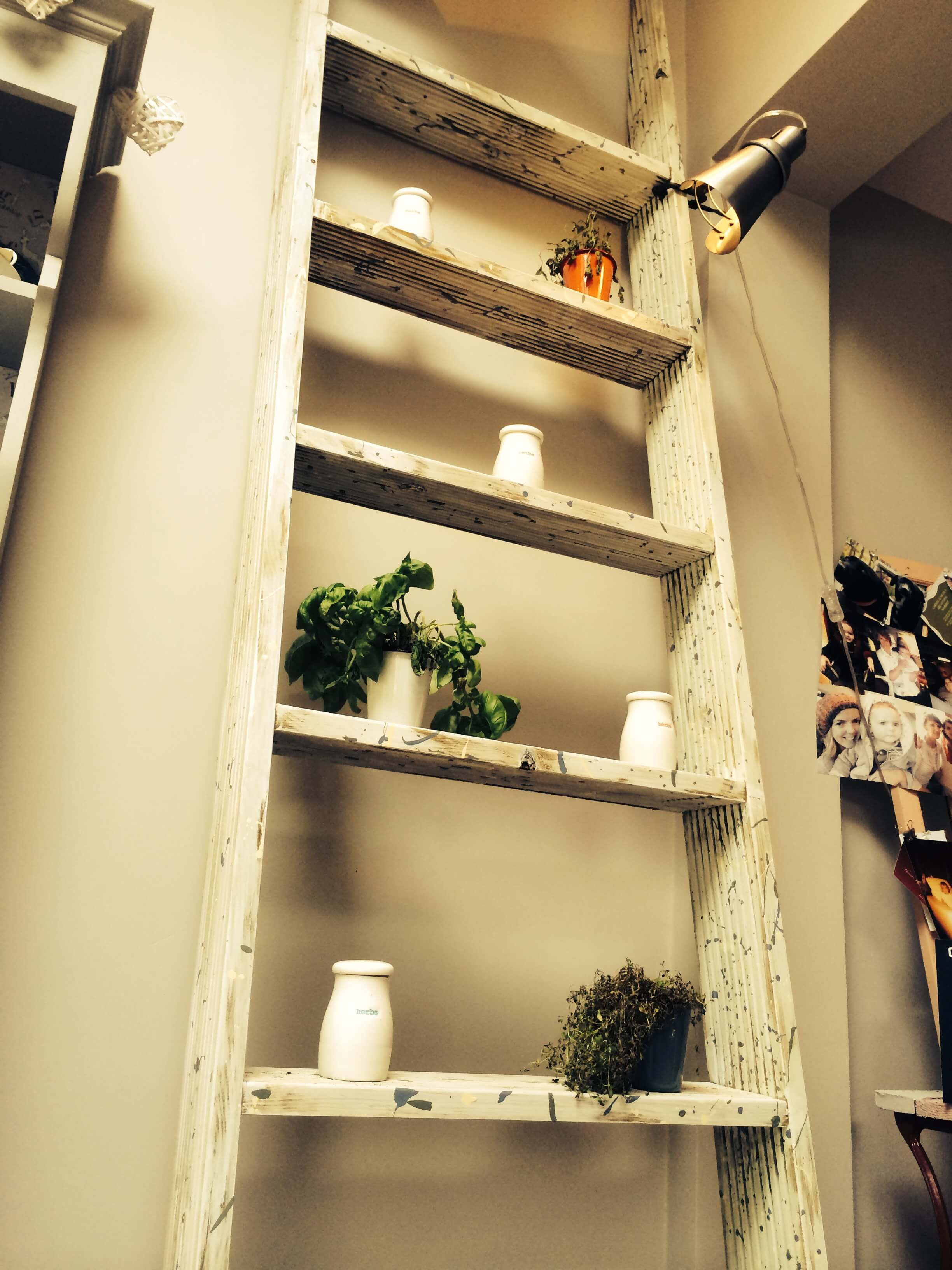 Another straight on view of the shelving with added accents.