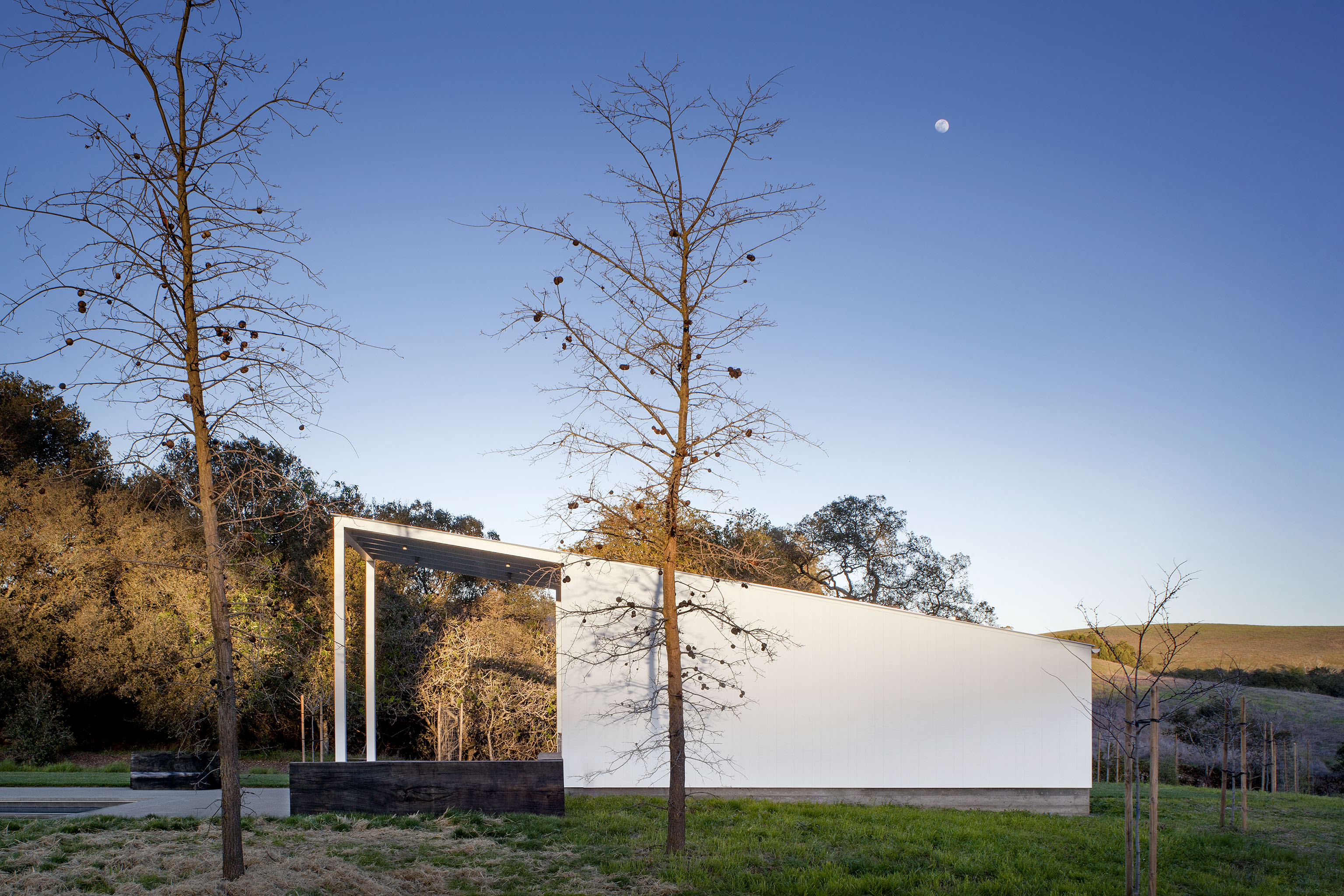 From the side, we can see the pool house roof soaring over part of the patio space, mimicking the gentle slopes of the surrounding landscape.