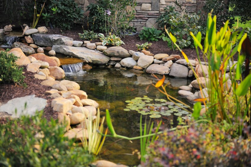 A simple pond with a few small ornamental fish and lilypads. Multiple small cascades run along this water feature.