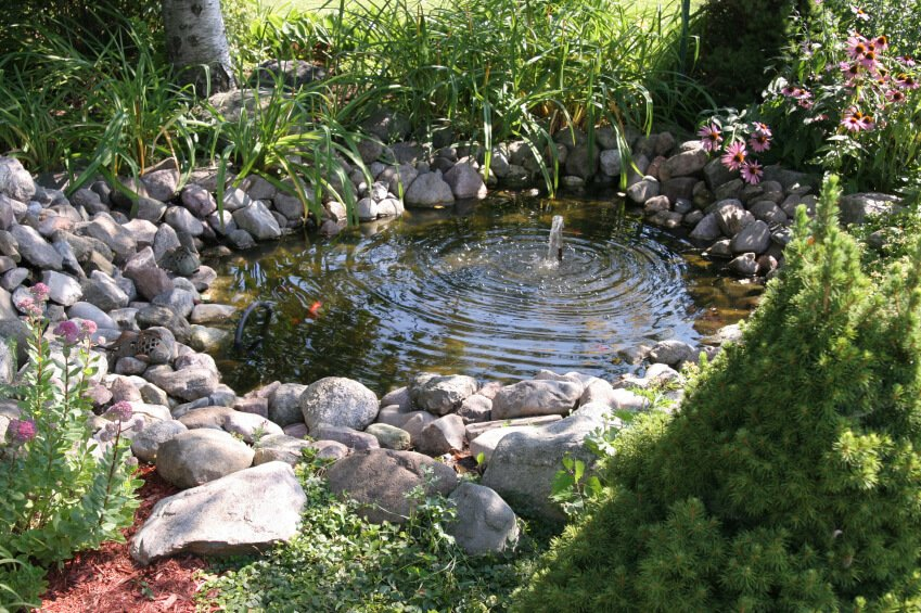 A somewhat deeper, small pond with a single fountain creating ripples from the center of the water. Round stones are piled around the edges, creating a bank. Grassy plants and hardy daisy flowers are integrated into the landscaping around the pond.