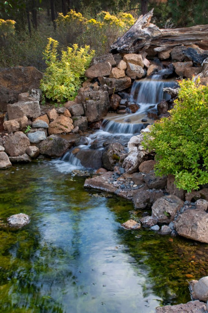 A beautiful backyard pond on a secluded lot. A large waterfall tumbles into the pond, which has a greenish-cast from the moss on the rocks covering the bottom. A branch across the top of the waterfall adds another natural element to this pond.