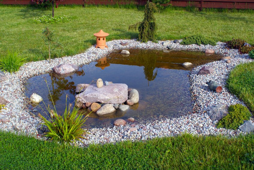 A shallow garden pool with a few ornamental rocks and grasses along the pebble edging. A small terra cotta Japanese lantern sits on one edge.