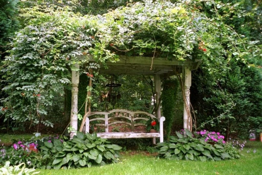 A peeling bench sits beneath a canopy of flowers, vines, and a weathered trellis.