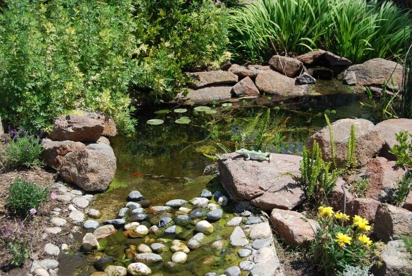 60 Backyard Pond Ideas Photos Home, Small Garden Pond Design