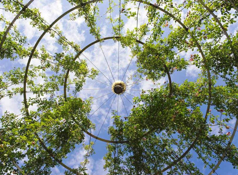 A metal hoop and wire construction offers glimpses of the passing clouds and as the plants take over, shade.
