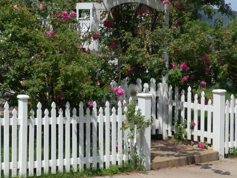 Large flowering bushes hang over the top of this classic white picket fence with pickets of alternating heights.