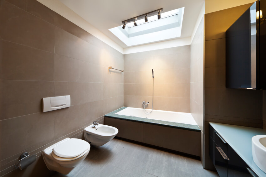 A gorgeous skylight allows the bathing area to glow in natural light in this modern minimalist space.