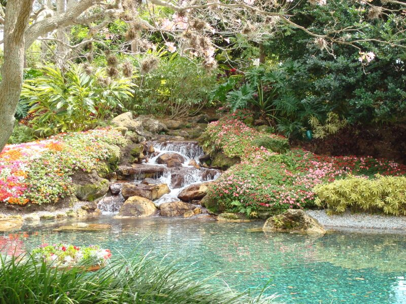 A floral carpet surrounds this beautiful waterfall, which leads into a crystal blue pond.