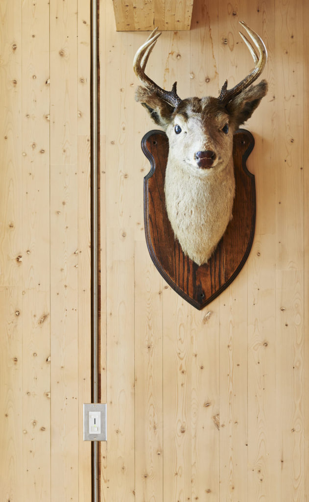 Next to this mounted deer head, we see one of the seems between prefabricated panels, with electrics lining the gap.