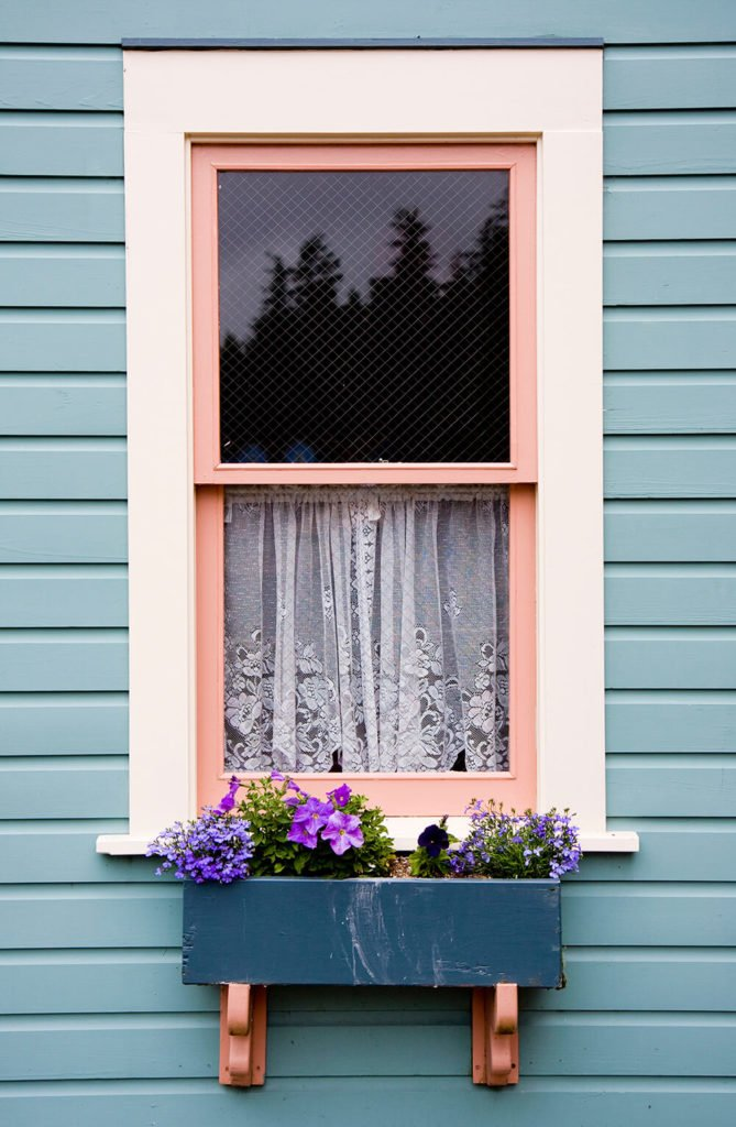 A simple, distressed deep blue window box filled with purple flowers beneath a small window covered by beautiful lace curtains.