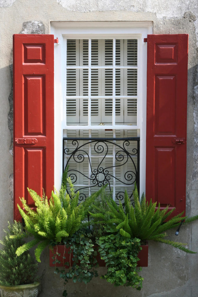 A small wooden window box filled with vines and ferns rests below a wrought-iron window screen.