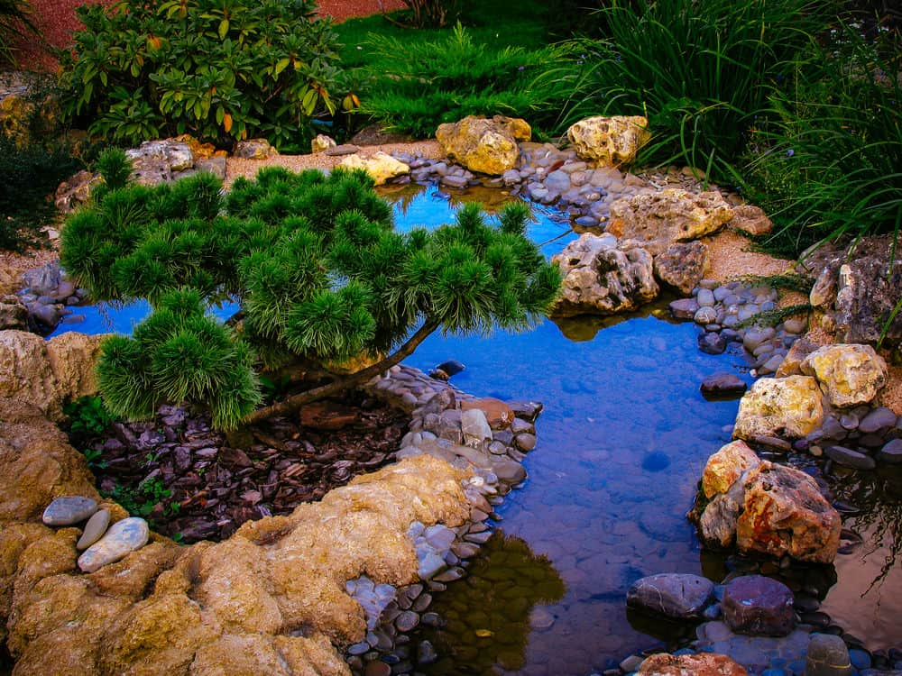 Seen at almost sunset, this shallow pond surrounded by porous rocks with lots of color features a small evergreen and a nice peaceful spot for an evening breather.