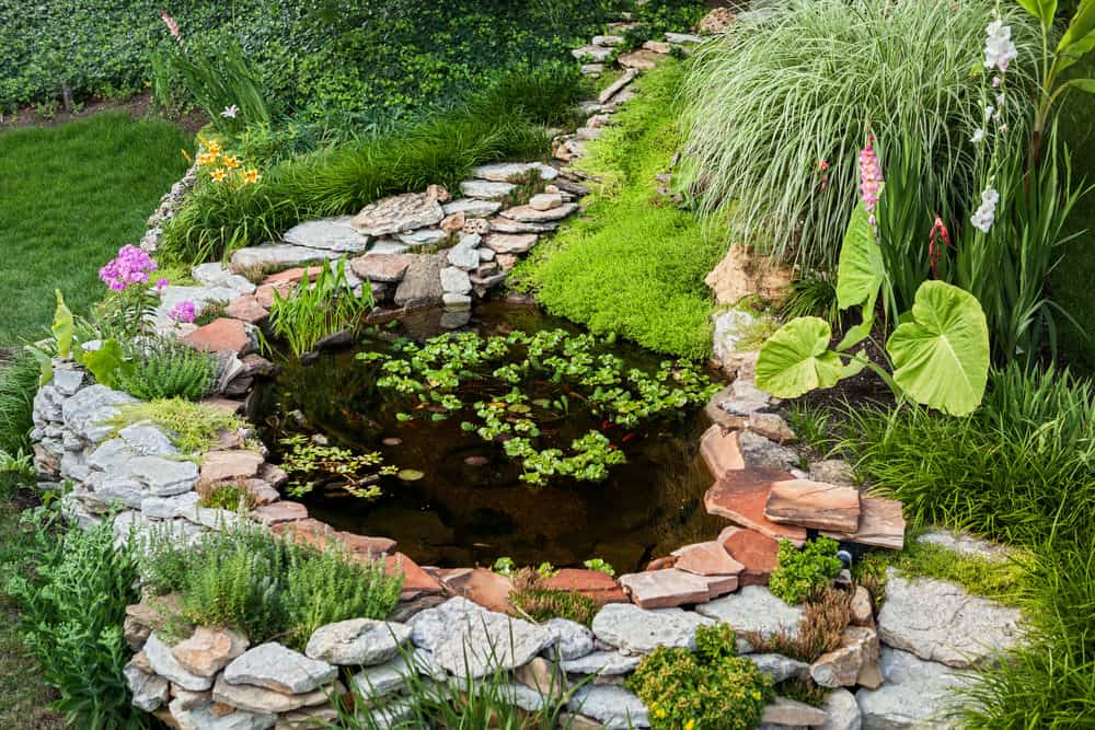 60 Backyard Pond Ideas (Photos)