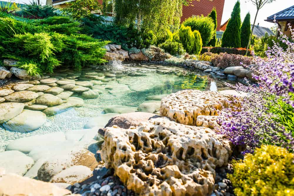 Shallow pond lined with soft rounded rocks and crystal clear water. A small waterfall makes music to your ears as you stop to enjoy this beautiful spot.