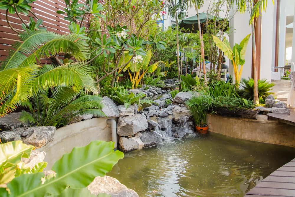 A deep pond surrounded by lush vegetation. A small waterfall cascades through rocks on the corner of the pond, creating a bit of moving and sound action.