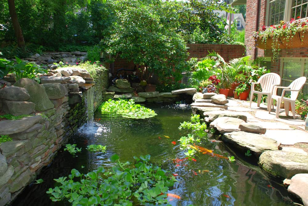 60 backyard pond ideas photos for Garden pond design