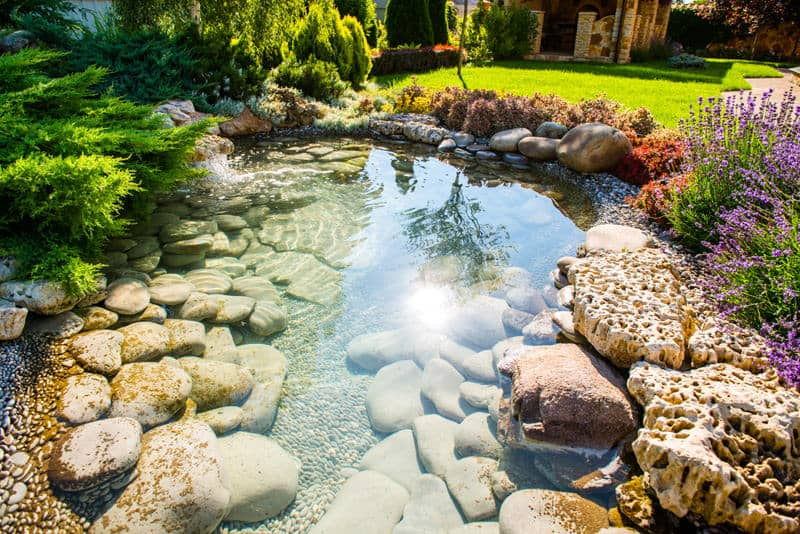 Clear water and beautiful rocks make this garden pond the perfect spot for a family gathering, where kids can hunt for rocks and have fun.