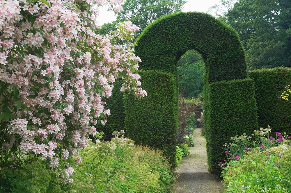 This keyhole hedge makes a natural entrance without compromising the beauty of the hedge. It also maintains the privacy of the garden beyond.
