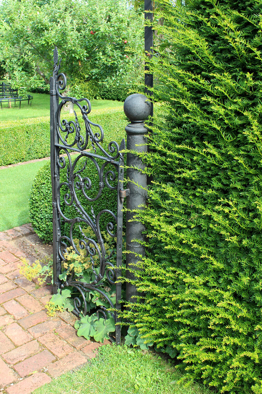 The elegant scrollwork in this gate contrasts the sharp shapes of the manicured hedges in the background.