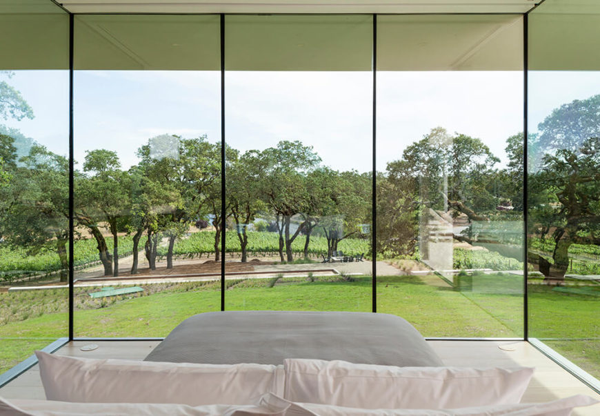 Here's a head-on view from inside the guest house. The spectacular expanse includes the vineyard itself, as well as the bocce courtyard and sprawling lawn.