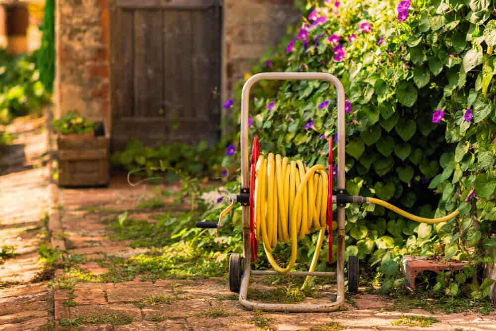 Reel cart garden hose in a backyard garden.