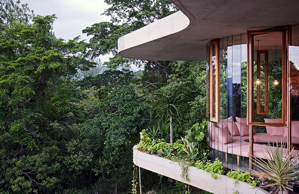 Curved structure of this modern home is bursting with greenery, overlooking the rainforest.