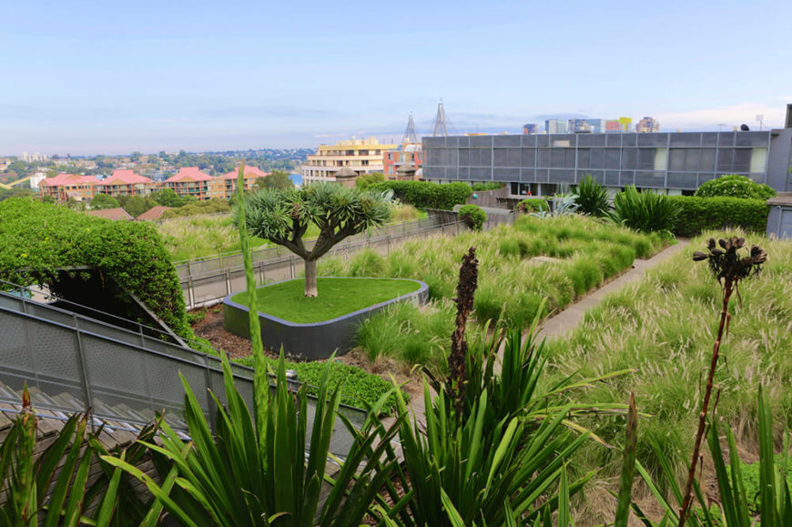 Hearty tropical plants and grasses create a green oasis in this cityscape. Large shrubs and climbing vines create natural barriers around the space, helping to break up the monotony of structure.